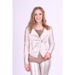 Gaudi jacket with silver leather